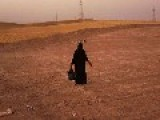 Isis Executes 150 Women For Refusing To Marry Militants