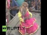 India: This Monkey Wedding Is Totally BANANAS!