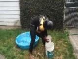 Ice Bucket Challenge - Tazed In Kiddie Pool