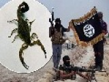 ISIS Using Bombs Containing Live SCORPIONS In Effort To Spread Panic In Iraq