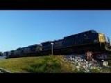 Just A Train Going Over Pensacola's Graffiti Bridge