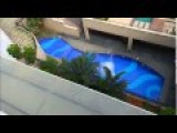 Jumping From The Top Of The Building Into SWIMMING POOL