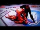 JUNIOR CIGANO DOS SANTOS HIGHLIGHTS KNOCKOUT