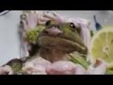 Japanese Frog Dish, Brutal