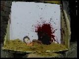 Jihadi John Taken Out By British 'Special' Forces