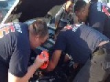 Kitten Rescued From Car Engine