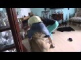 Keeping A Lion As A Pet: Lion Attacks A House Guest!