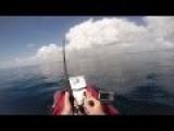 Kayaker Reels In A 10 Foot Shark