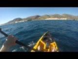 Kayak Fisherman Fights Off Aggressive Hammerhead Shark!!! Full Video