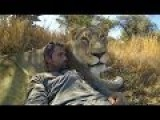 Kevin Richardson- The Lion Whisperer & An Outlook On Life