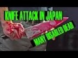 KNIFE ATTACK AT JAPANS DISABLED CENTRE 19 DEAD