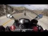 Kawasaki Ninja 300 SportBike Motorcycle - Kawasaki Ninja ZX6R 636 Noob Rider Got
