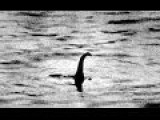 Lochness Monster Will Appear Wihtin 50 Seconds