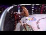 Liam Mcgeary Vs Egidljus Valavicius MMA Fight