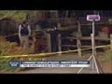 Longmont Woman Attacked, Unborn Baby Stolen