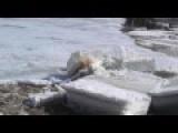 Large Chunks Of Ice Floating Down The Kureyka River