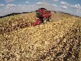Last Year's Corn Harvest Aerial Video