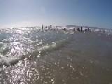 Lifeguard Dives Into Coronado Beach Waters To Save Near-Drowning Boy