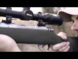 Lion Kill Sequence - Northwest Hunter