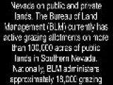 Liveleak Video Worthy Imminent, MILITIA STANDOFF WITH BLM IMMINENT