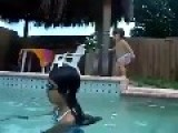 Little Baby Jump In The Pool ' Just Like A Pro