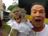 Laugh With My MONKEY !!