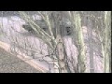 Makiyivka Special Operation W Snipers, Machine Gunners, Tanks 2 Vids - March 17, 2015