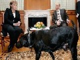 Merkel Gives Insight To Putin's Strange, Macho Behaviour