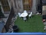 Man Creates Fake Backyard In NYC To Cover Up Secret Excavation