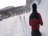 Moose Tramples By Skiers, In Deep Powdered Snow