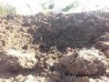 Maliki Shiite Army Uses Explosive Barrels On Youssifiyah