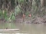 Massacre Of Uncontacted Tribe In Peru Revealed