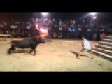 Man Taunts Bull - Gets Launched Into The Air!