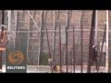 Migrants Scale Fence At Spanish Border