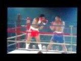 Mike Tyson Vs Sterling Benjamin Boxing