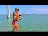 Most Popular Fishing Video Clips With Darcizzle Offshore