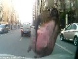 Mad Bull Runs Wild On Busy Street, Injuring Many People