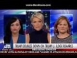 Megyn Kelly Goes Off: Trump Is Setting Precedent Of 'Chaos In Our Court System'!