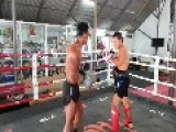 Muay Thai Kickboxer Takes His Training Way Too Seriously!