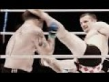 Mirko Cro Cop Filipovic Highlights Best Knockouts