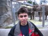 Me At The Zoo - The First Video On YouTube