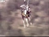 Never Mind Pigs Flying, Here's A Horse At 150ft