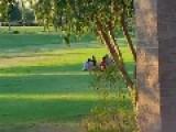Nerds Meet Park