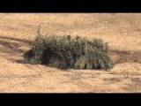 New Japanese Military Army Weapons 2015 - Running Bushes
