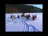 No---Harlem Shake Attacks Finland's Ice Fishermen--Please No!