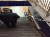 NYC Straphanger Argues With Policeman About Dogs In The Subway Having More Rights Than He Does