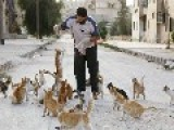 New Image From Syria Shows Beautiful Syrian Man Feeding Cats In Aleppo