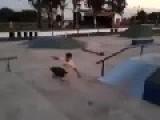 Ninja Skateboarder