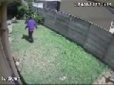 Omg Beware Of The Dog !!!