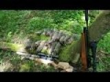 Pest Control With Air Rifles - Squirrel Shooting - Attempt On The Family Record Pt 2